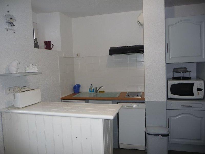 location saisonnière T3 confortable entièrement rénové proche centre, holiday rental in Vebre