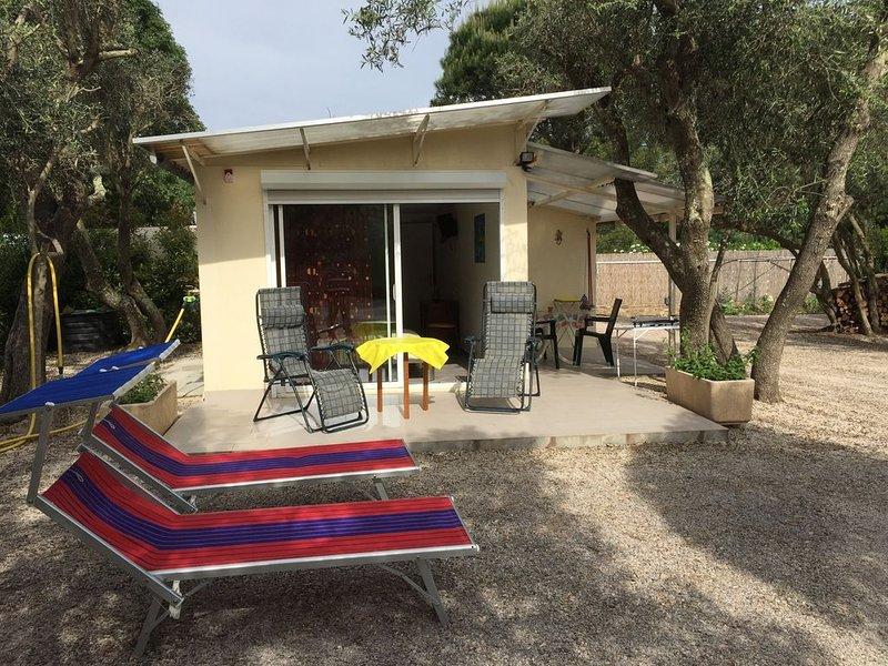 Petite maison dans oliveraie à côté d'ARGELES SUR MER, holiday rental in Ortaffa