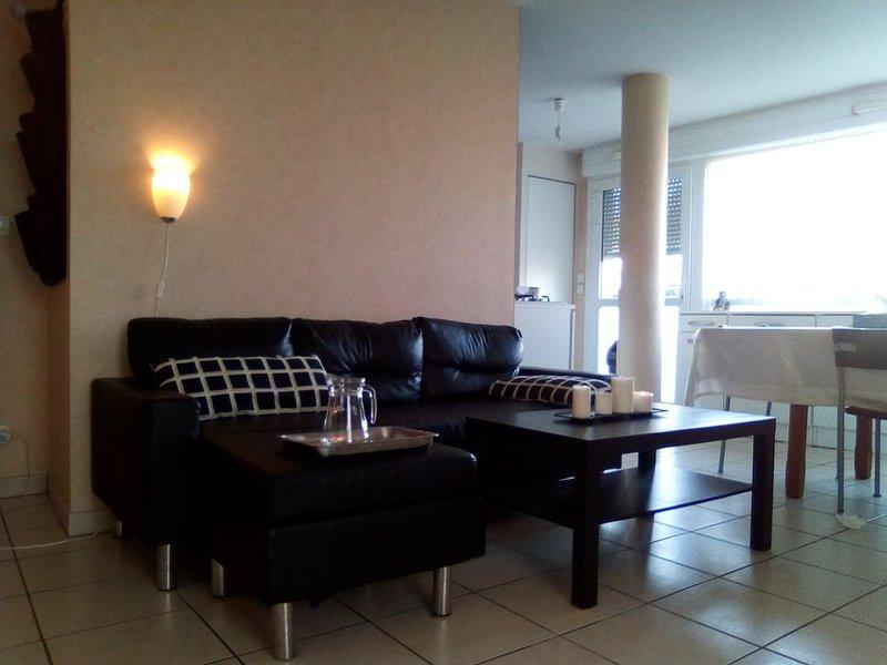 Dijon centre au Rdc 2 Chambres, jardin clos , idéal famille., vacation rental in Genlis