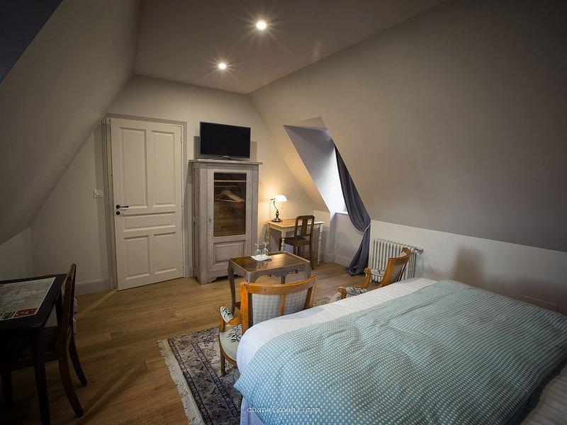 Chambres d'hôtes Cœur Historique de la vieille ville de chinon, holiday rental in Chinon