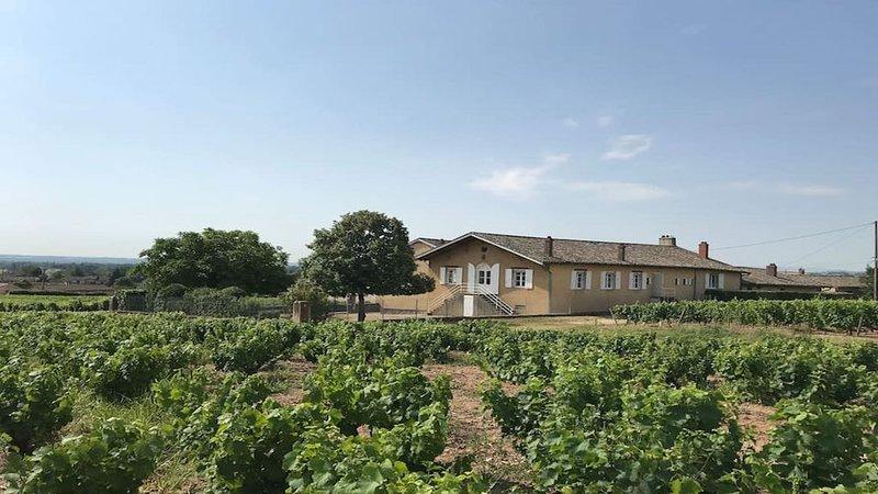 Gîte de chêne Haut au coeur du vignoble Beaujolais, holiday rental in Quincie-en-Beaujolais