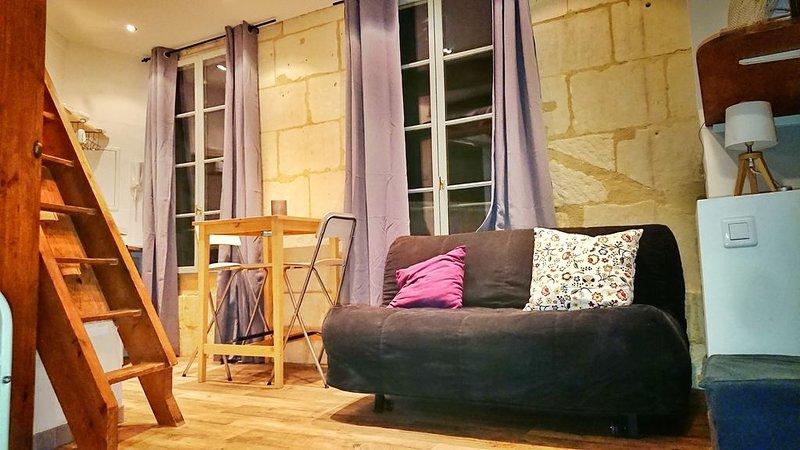 Studio dans le centre historique d'Arles, vacation rental in Fourques