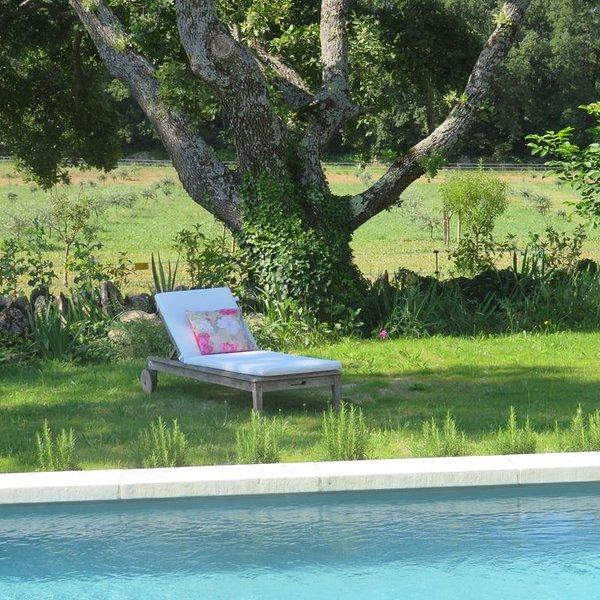 Invitation au farniente ( 2 ), holiday rental in Menerbes
