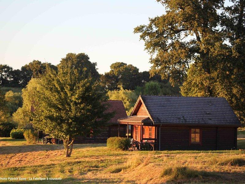 Cottage Cosy pour 2 personnes avec accès piscine chauffée et jacuzzi, holiday rental in Jouet sur l'Aubois