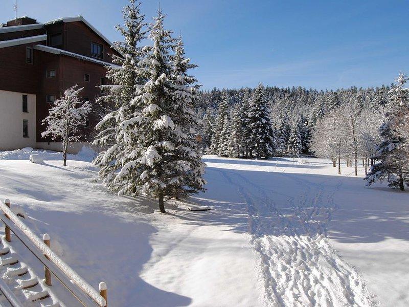 Appartement 6 Personnes, aux pieds des pistes expo plein Sud, location de vacances à Saint-Julien-en-Vercors