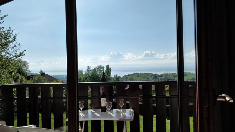 Appartement superb vue lac, 450m de la télécabine., location de vacances à Thollon-les-Mémises