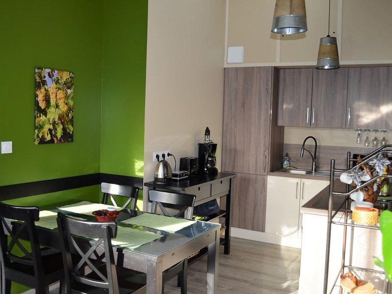 GITE COSY situé entre commerces et activités de loisir, holiday rental in Montlouis-sur-Loire