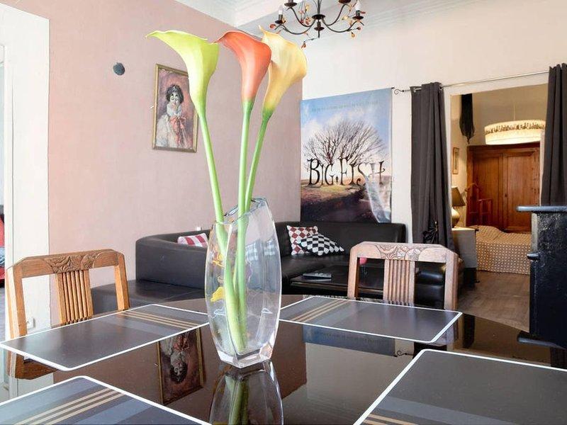 55m² centre historique de Pézenas 2em etage complet, holiday rental in Lezignan-la-Cebe