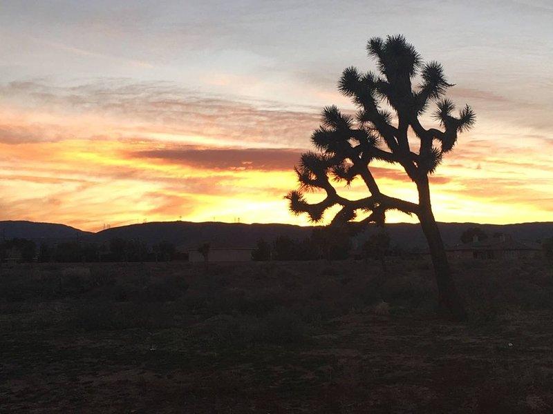 Desierto Atardecer desde el patio delantero