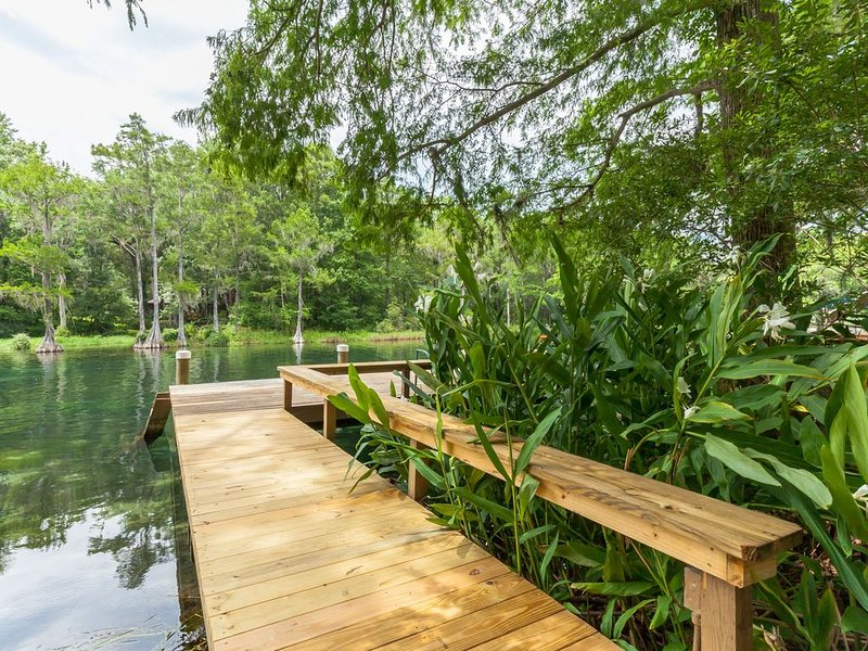 Breathtaking Rainbow River single family home – semesterbostad i Dunnellon