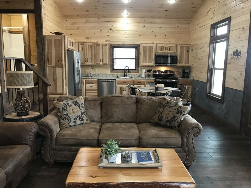 Sanitized, BRAND NEW Cabin w/Jetted 2 person tub, fireplace, hiking, canoeing, holiday rental in Parthenon