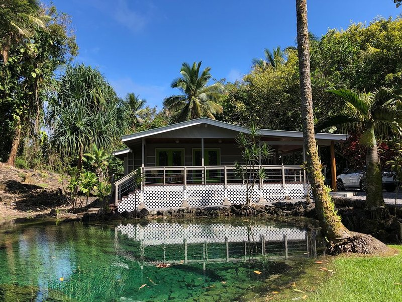 Private home across the street from the beach. Minutes from downtown Hilo, holiday rental in Hilo