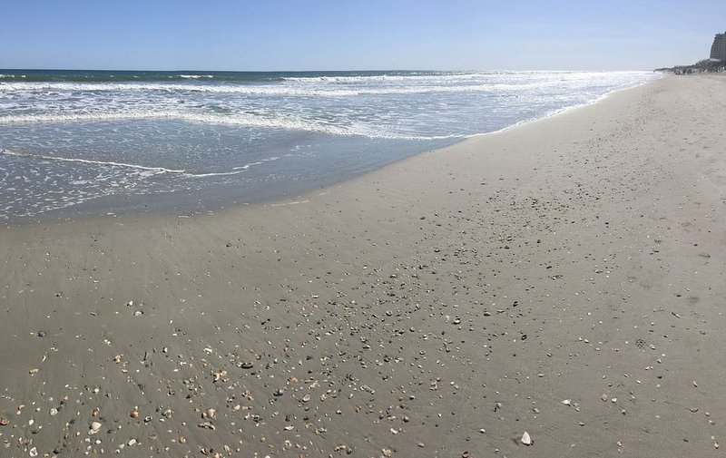Come and relax with a full ocean view of OIB. Now booking for 2021 season!!, vacation rental in Brunswick