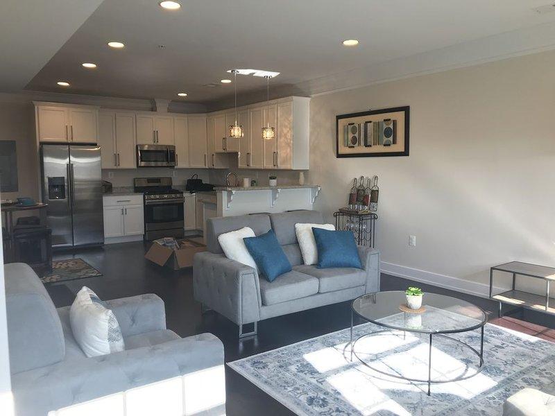 Entire Extra Large Luxury 3 bedroom Condo, casa vacanza a Chillum