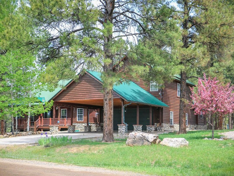 Spacious  Lodge w/ Hot Tub! Lake & Mountain Views- Close to ski & hot springs!, holiday rental in Pagosa Springs
