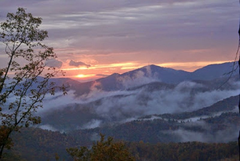 High Altitude Hide Away - Mountains, Cherokee National Forest, holiday rental in Murphy