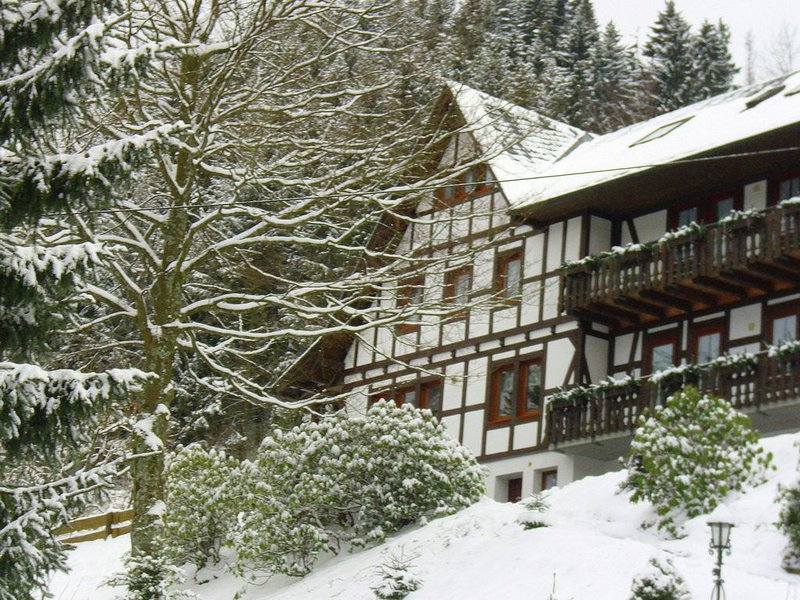 Peaceful Apartment in Schmallenberg with Terrace, alquiler vacacional en Schmallenberg