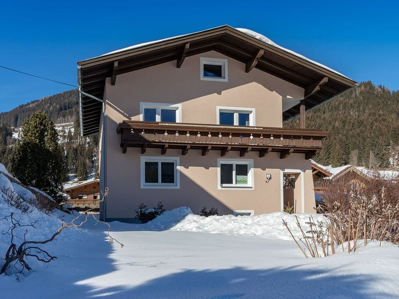 Modern Apartment near Ski Area in Mühlbach, holiday rental in Zell am See