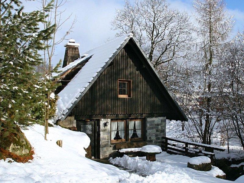 Lovely Holiday Home in St. Georgen ot Brigach with Roofed Terrace, aluguéis de temporada em St. Georgen im Schwarzwald