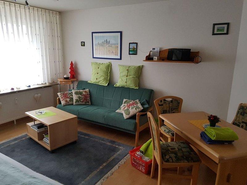 1-Raum Appartement, 36qm, 1 Wohn-/Schlafraum, Südbalkon, max. 2 Personen, Ferienwohnung in Nürtingen