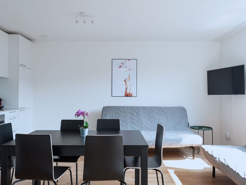 BS Wolf IV - Messe HITrental Apartment, alquiler vacacional en Lorrach