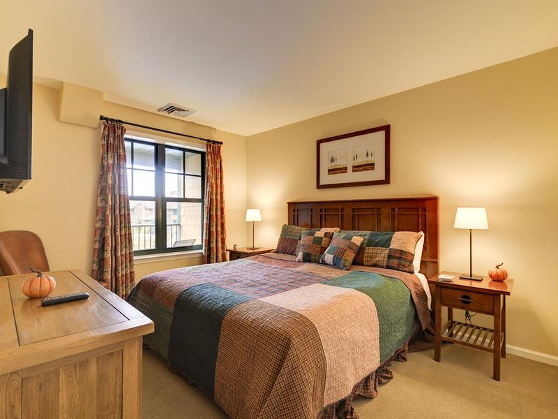 Appa 312 - Mountain Lodge - Mtn Front - Pool - Wineries - 50 miles from NYC, vacation rental in Vernon