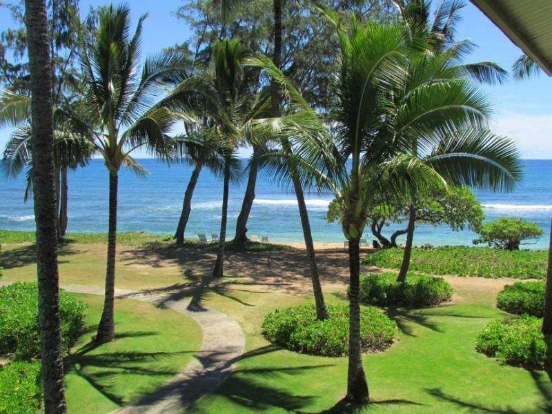 Tropical Retreat for Three, alquiler de vacaciones en Kapaa