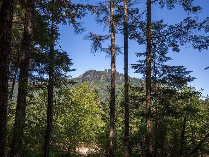 Located in the beautiful Elwha Valley