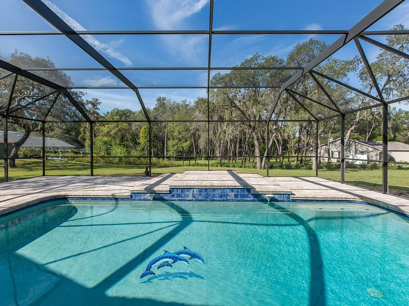 Cozy Home, Country Setting, Close to Gulf Beaches, holiday rental in New Port Richey