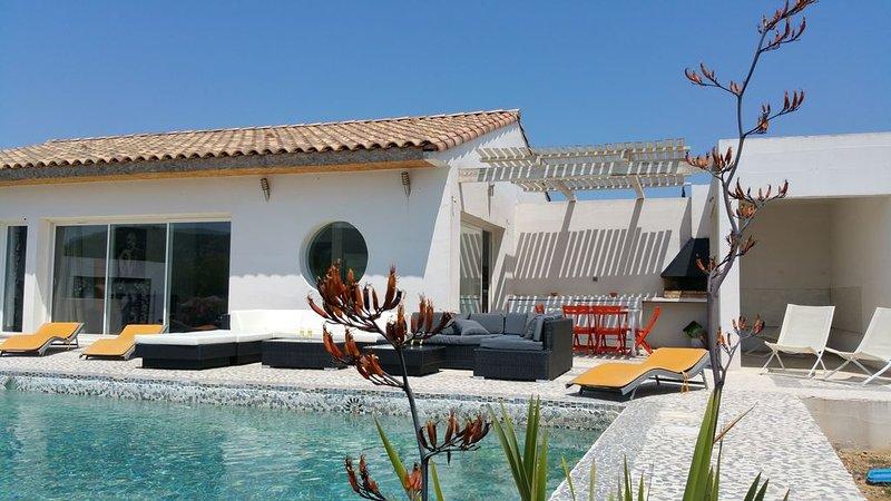 VILLA DECOREE PAR UN ARTISTE AVEC PISCINE ET JARDIN PRIVATIF, vakantiewoning in Saint-Andre-de-Roquelongue
