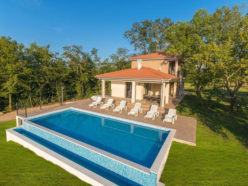Sehr schöne und geräumige Villa mit großem Garten und tollem Pool, holiday rental in Basko Polje