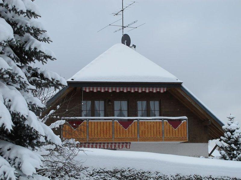 Komf. ***FeWo Titisee-Schluchsee-Feldberg-Geb, Internet, Hochschwarzwald-Card, casa vacanza a Saig
