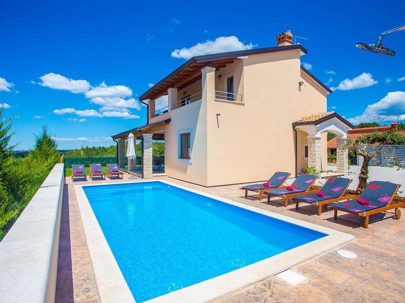Wunderschöne Villa mit Schwimmbad, SPEKTAKULÄREM Blick, Grill, kostenloses WLAN, Ferienwohnung in Visnjan