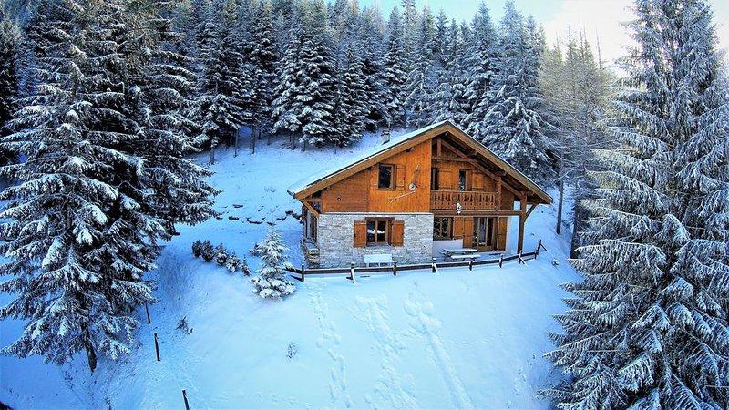 MAGNIFIQUE CHALET**** LA BUISSONNIERE, calme, coeur de station,proche des pistes, holiday rental in Valfrejus