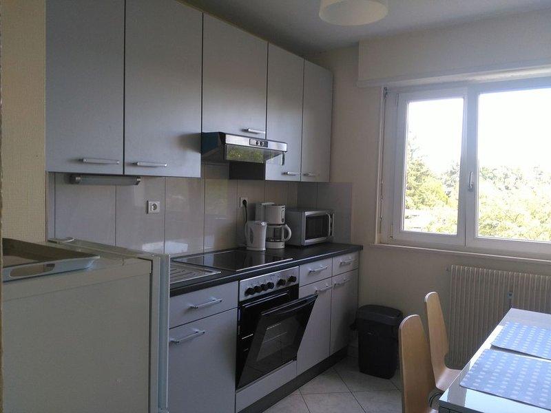 Charmant 1 pièce,cuisine ,salle de bains de 35 m2 dans residence trés calme., holiday rental in Dannemarie