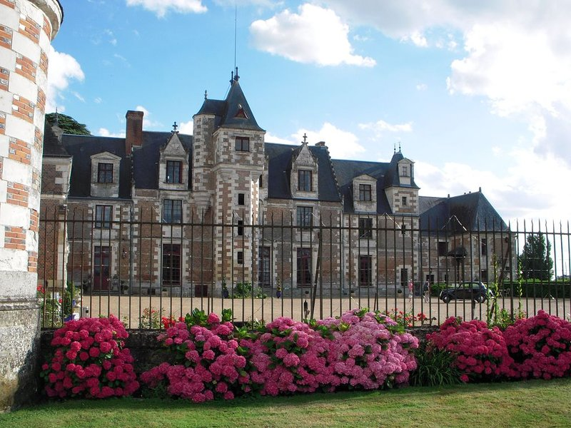 Appartement et Gd terrasse au 1er étage du Château de Jallanges - vue sur parcs, location de vacances à Reugny