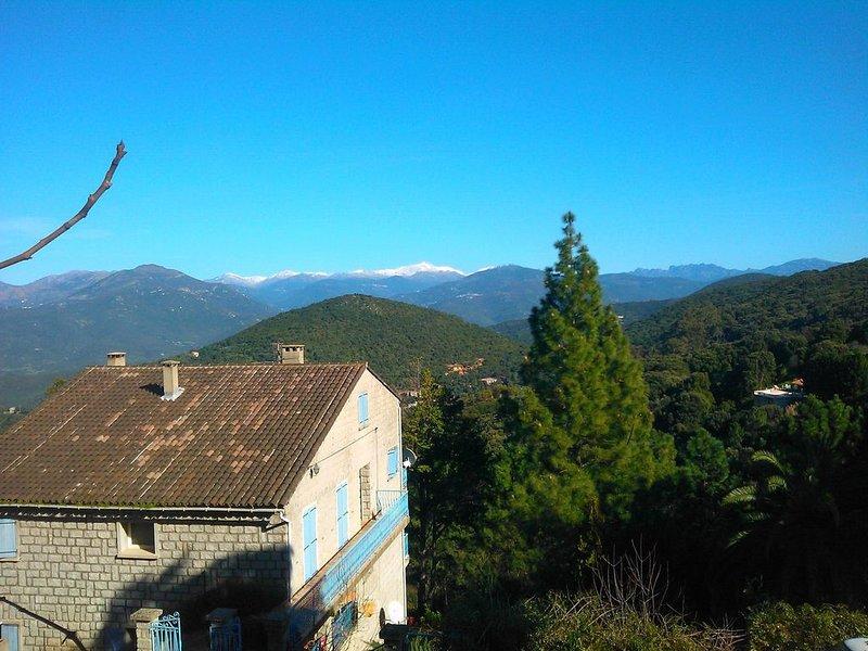 Rez de jardin de 60 m2, calme et ombragé, location de vacances à Sartène