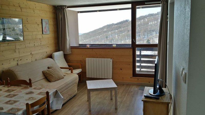 SUPER BESSE Appartement 4-5 personnes - pied des pistes -Tout confort Chaleureux, holiday rental in Puy-de-Dome