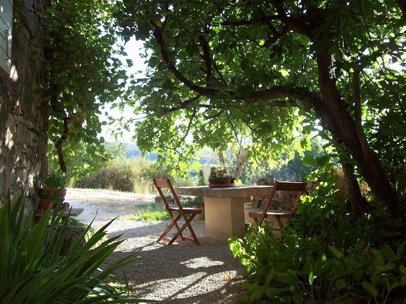 Location de charme en Luberon 'Sous le Figuier', holiday rental in Murs