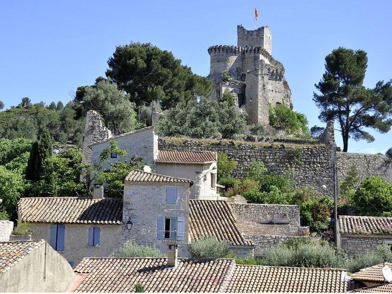 Gite Boulbon.Maison au pied du vieux Château entre Avignon & Baux de Provence, holiday rental in Saint Pierre de Mezoargues