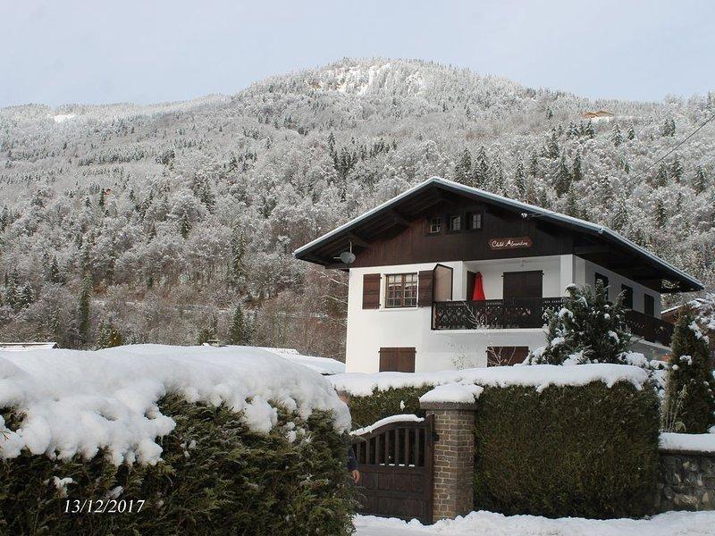Grand chalet avec Spa. Pour skier dans le Grand Massif et profiter du Lac Bleu, holiday rental in Verchaix