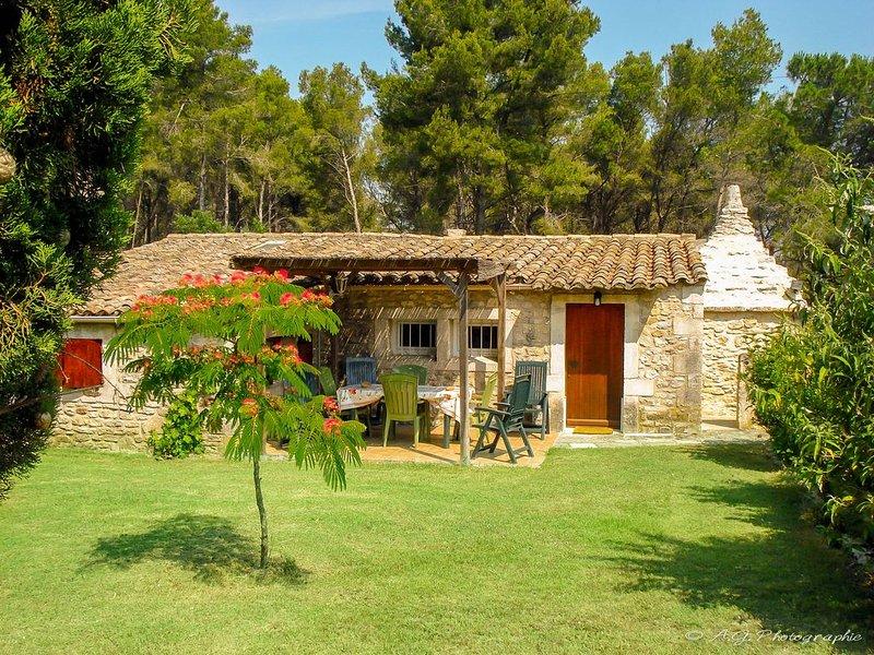 Gîte au calme exceptionnel sur 4,5 Ha d'oliviers et de pins, location de vacances à Saint-Rémy-de-Provence