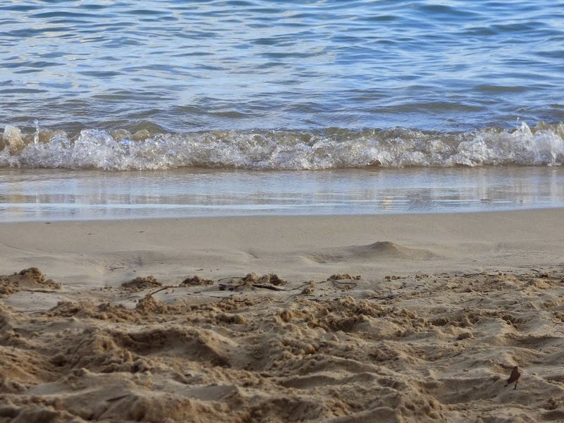 The beach (2)