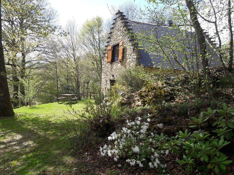 Au coeur d'un site renommé des Pyrénées ariégeoises, vakantiewoning in Ariege