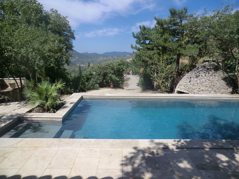 mazet entre piscine tilleuls et borie à la roche sur le buis, holiday rental in Eygaliers