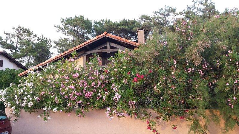 Villa landaise à 200 m de la plage à Capbreton (Landes-France), holiday rental in Capbreton