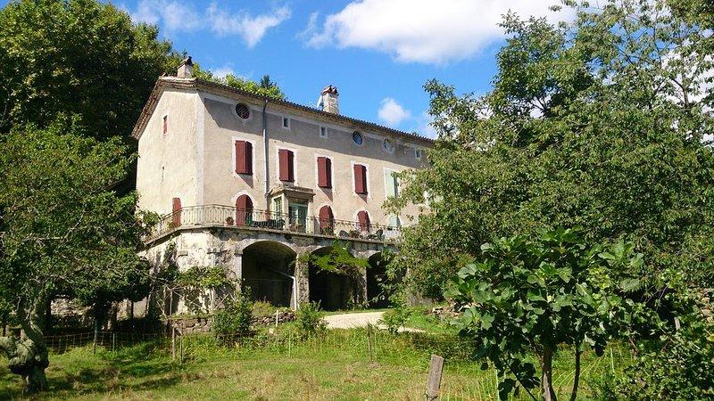Grande maison familiale de 16 couchages au coeur d'un beau village médieval, holiday rental in Saint-Michel-de-Deze