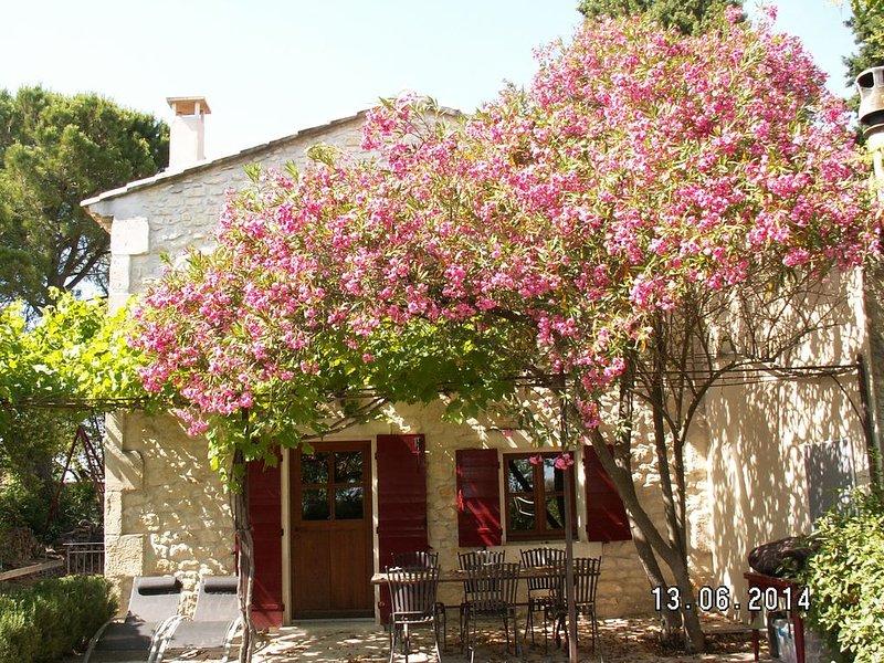 Venez DÉCONFINER au vert !!!, holiday rental in Bouches-du-Rhone