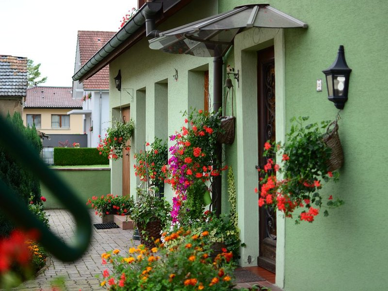 Gîte Guewenheim Haut-Rhin pour 4 personnes, holiday rental in Dannemarie