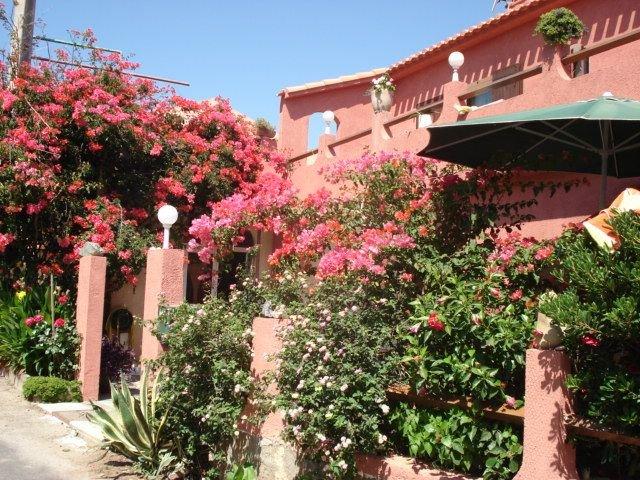 Appartement - 50 m2-  un écrin de Fleurs- 2 terrasses -très ensoleillé-, holiday rental in Macinaggio